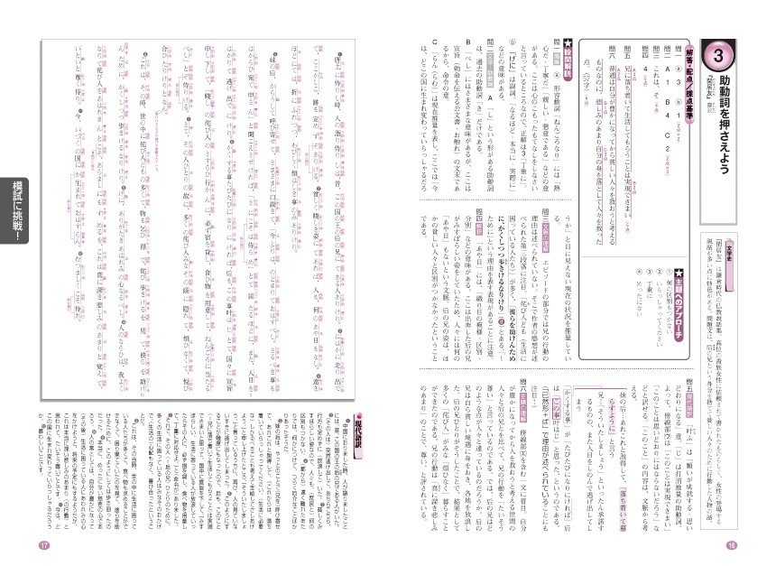 進研WINSTEP 短期集中 高1国語 Vol.3(1月模試に向けて)[改訂版]「問題」